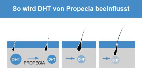 Propecia DHT