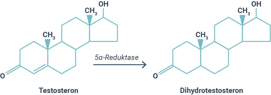 Dihydrotestosteron